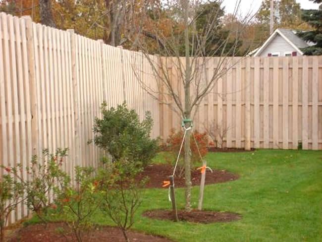 Privacy Fence Cedar Shadow Box - Privacy 14